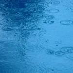 Rain Ripples